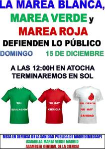 CARTEL  DEFINITIVO MAREA  15 DE DICIEMBRE-