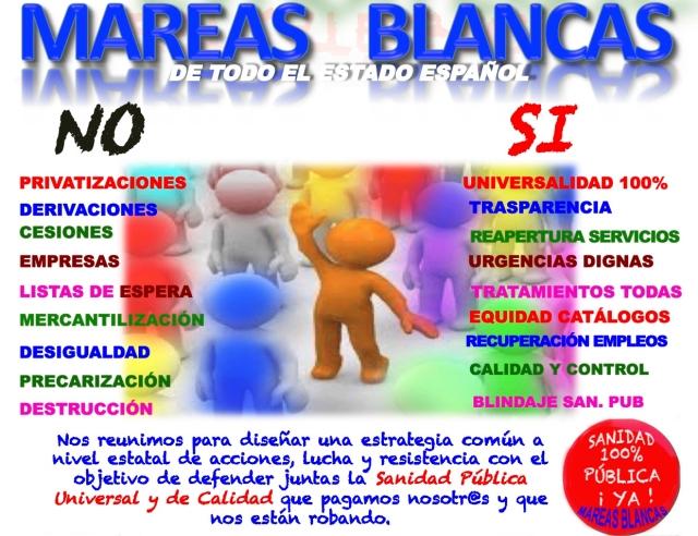 PLAN Iª ASAMBLEA ESTATAL DE MAREAS BLANCAS